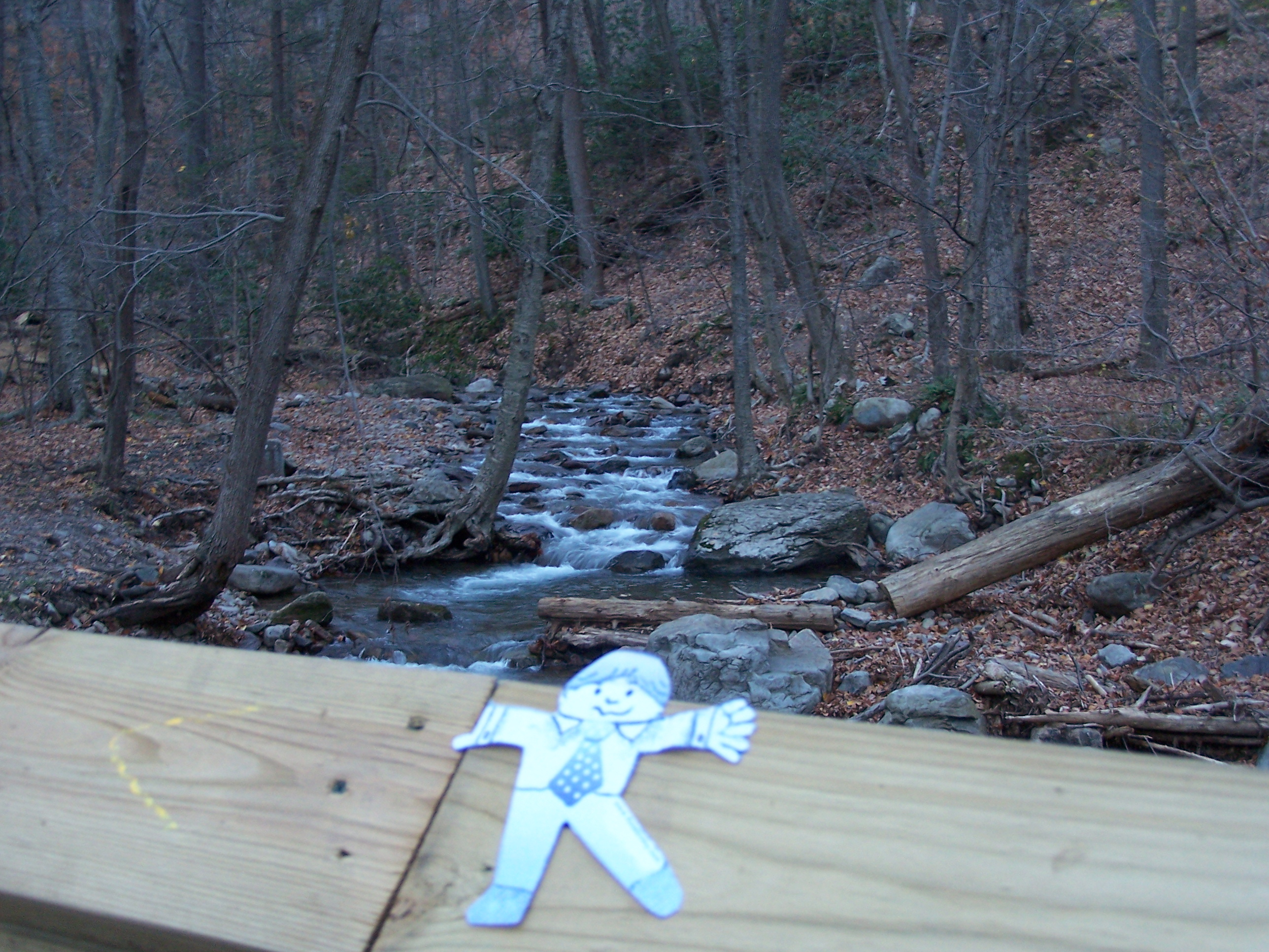 Flat Stanley Rohland on bridge over Dunnfield Creek